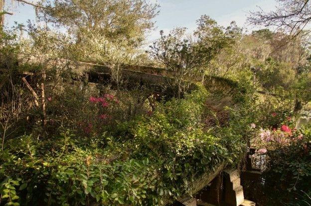 Os parques abandonados que 'a Disney não quer que você veja'