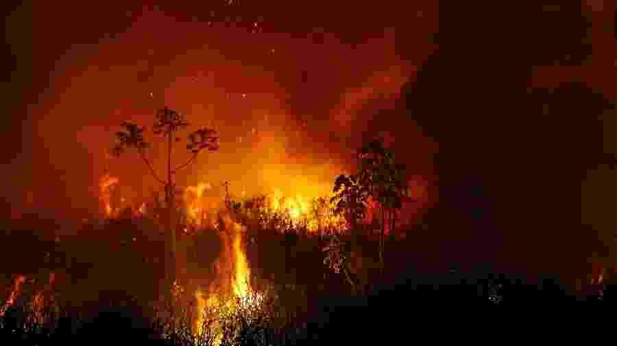 Foco de incêndio no Pantanal, na região de Poconé, no Mato Grosso  - Amanda Perobelli/Reuters