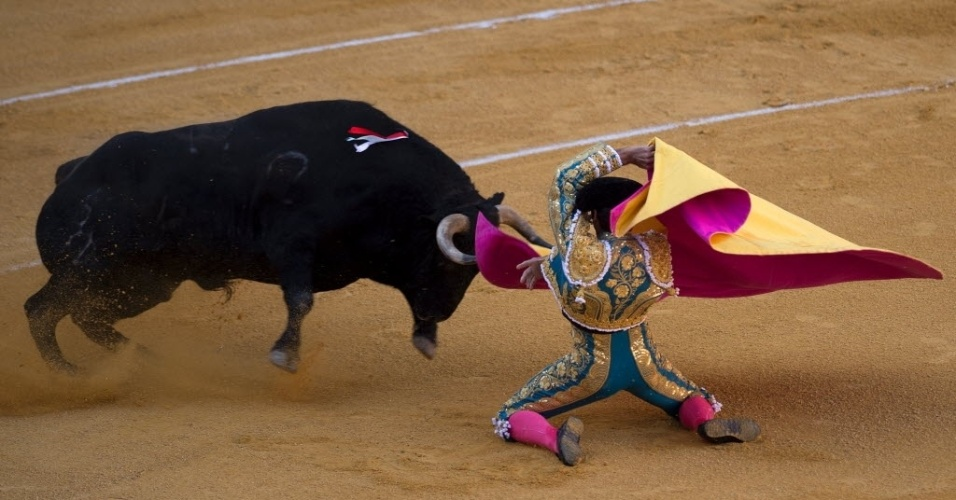 """26.mai.2016 - O toureiro Cayetano Rivera se ajoelha para executar o movimento denominado """"capote"""" durante festival de touradas em Granada, na Espanha"""