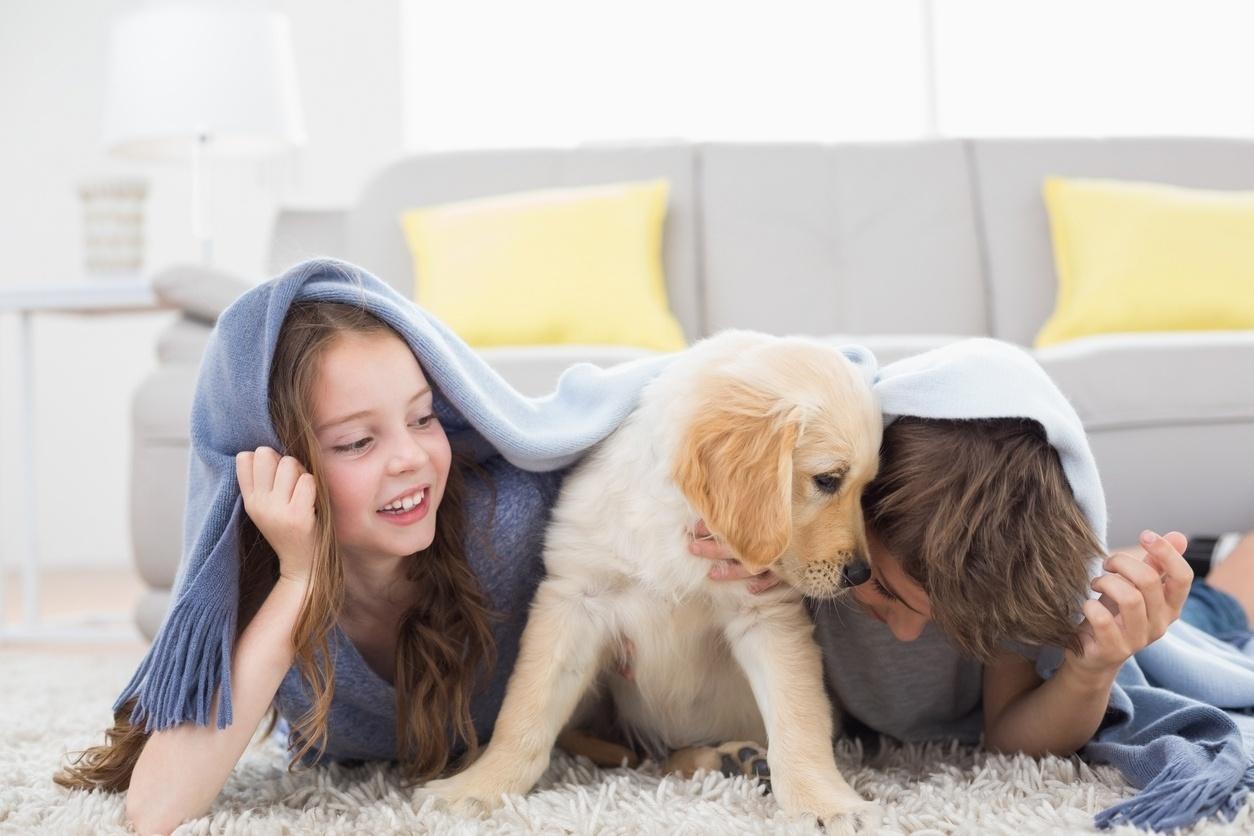 Criança; animais; pet; cachorro