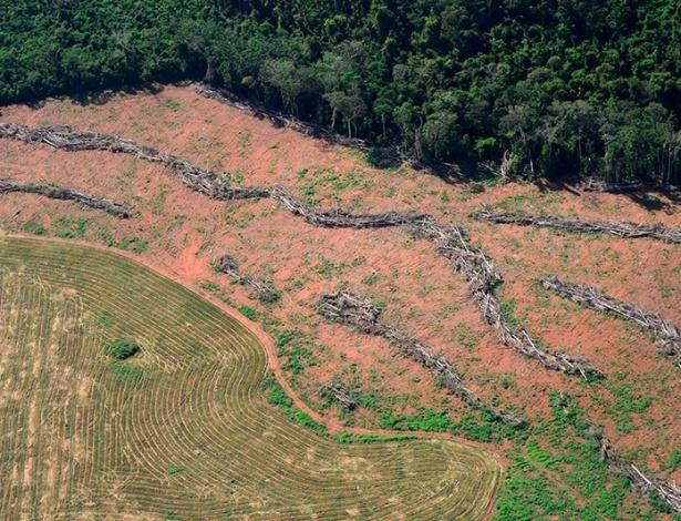 Desmatamento em região próxima ao local onde os deputados decidiram reduzir a área de proteção, em Novo Progresso, Pará