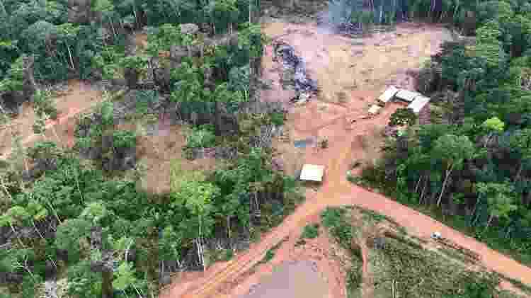Área queimada e desmatada no município de Boca do Acre (AM), mapeada pela Força-Tarefa Amazônia - Divulgação - Divulgação