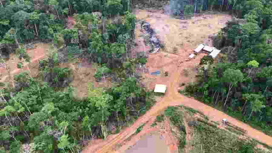 Área queimada e desmatada no município de Boca do Acre (AM) - Divulgação