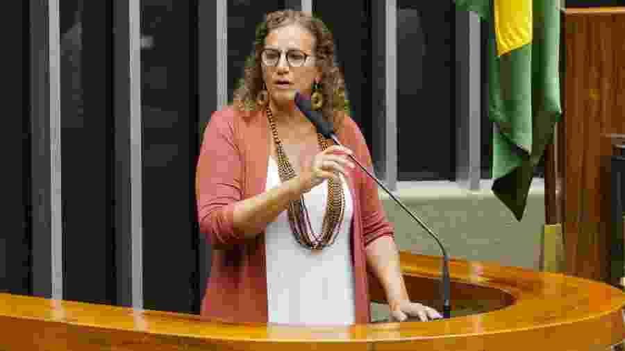 Além de Jandira Feghali, Sâmia Bonfim também disse que vai abrir representação contra Bibo Nunes no Conselho de Ética - Pablo Valadares/Câmara dos Deputados