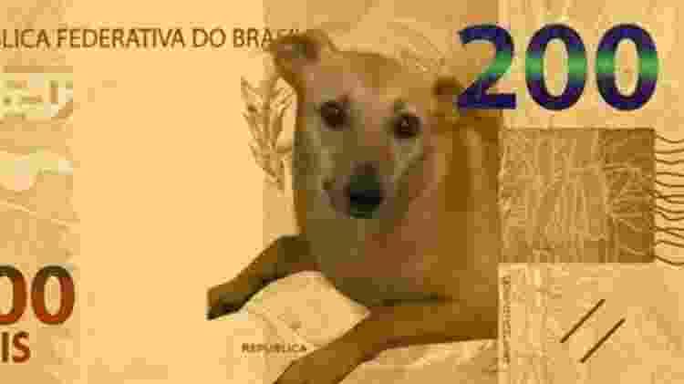 Meme com nova nota de R$ 200 - Reprodução/Twitter - Reprodução/Twitter