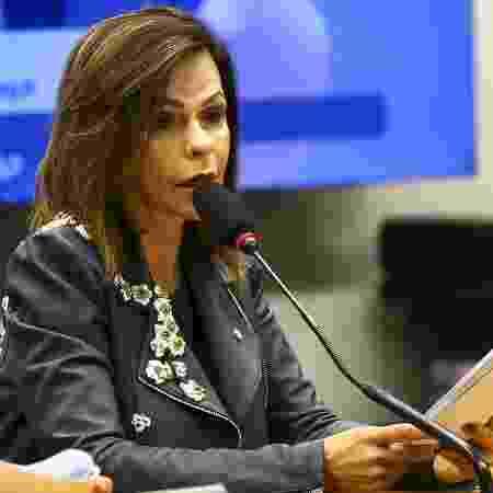 Votação do relatório do Fundeb, da deputada Professora Dorinha, apressou ruptura de partidos - Agência Brasil - Agência Brasil