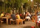 Espaço cria festa de Réveillon para donos e cachorros comemorarem juntos - Reprodução Facebook