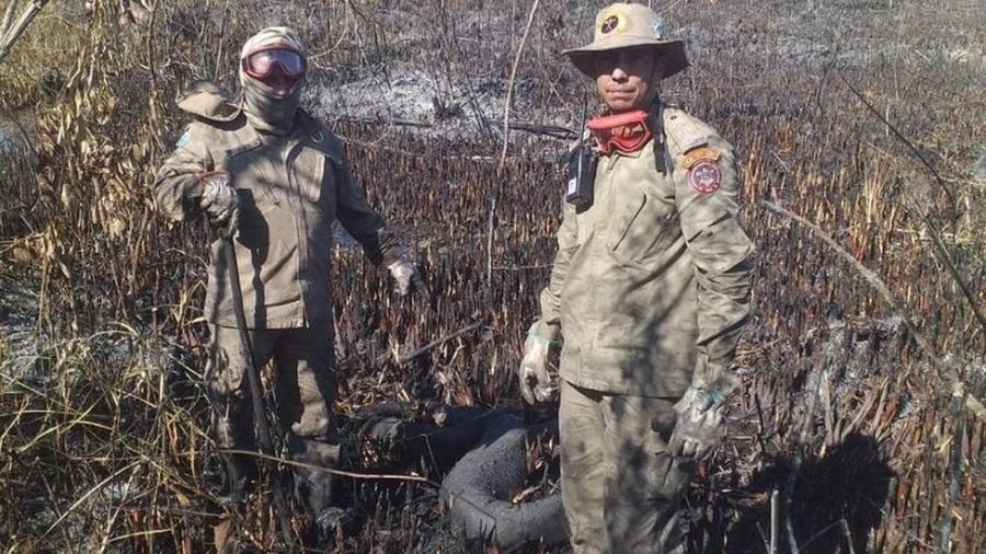 Incêndio atingiu cerca de 3,7 mil hectares em área entre Bonito e Jardim, ambas em Mato Grosso do Sul - Corpo de Bombeiros MS
