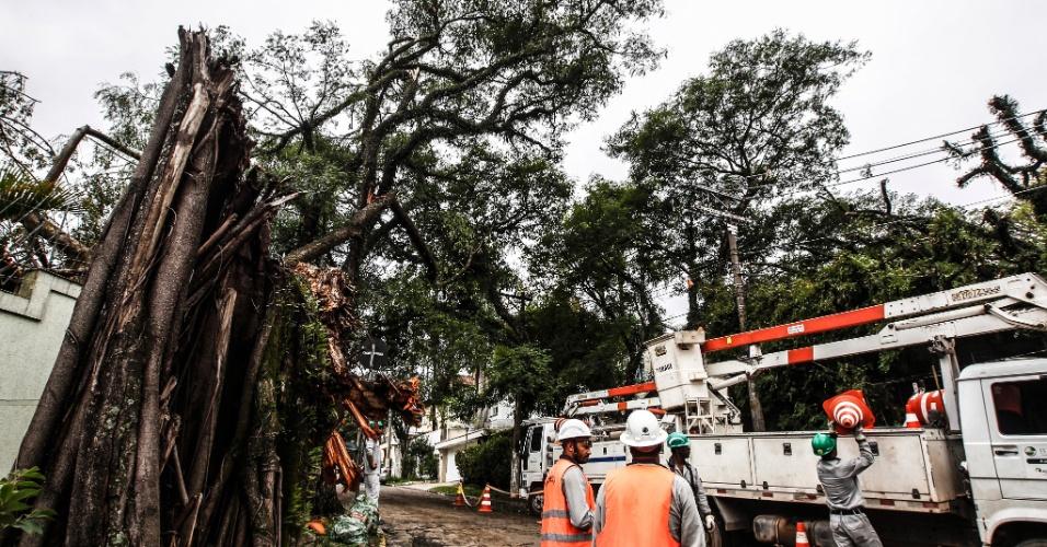 21.out.2016 - Funcionários trabalham para retirar parte de árvores que caíram e interditaram a rua Décio Reis, esquina com rua Desembargador Ferreira França, após forte chuva na cidade de São Paulo