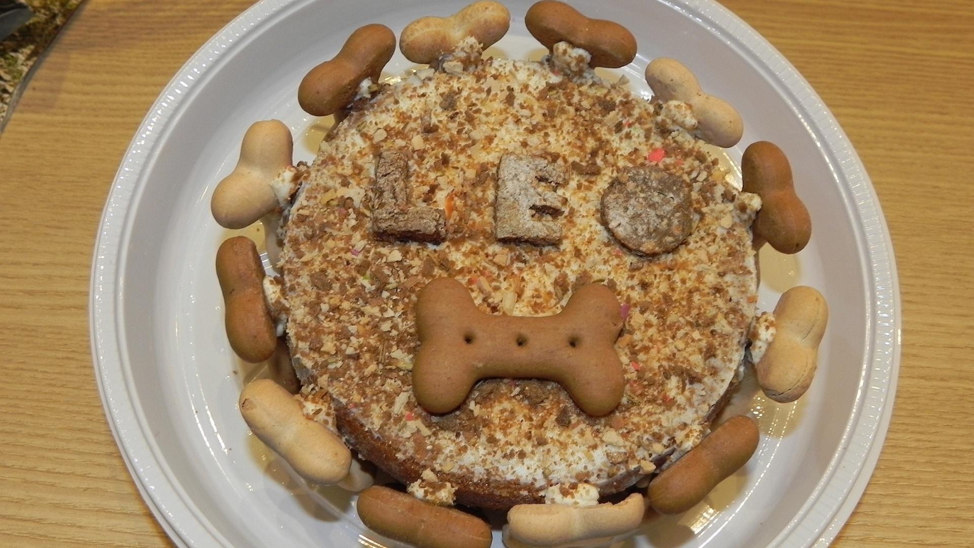 Padaria Pet bolo de aniversário