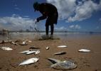 Justiça condena usina a pagar R$ 13 milhões por morte de peixes
