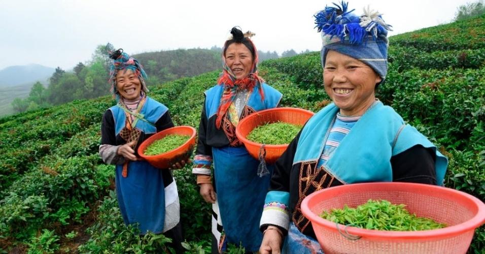 29.mar.2016 - Mulheres colhem folhas de chá em Anshun, província de Guizhou, sudoeste da China. Mais de cem competidores participaram do concurso que premia o melhor chá