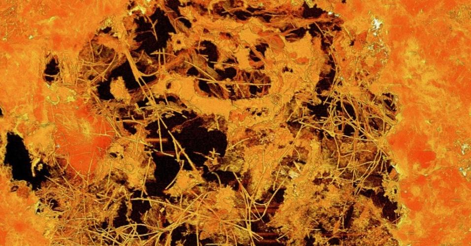 24.abr.2017 - O FÓSSIL MULTICELULAR MAIS VELHO JÁ ENCONTRADO - Imagem divulgada pelo Museu de História Natural da Suécia mostra o raio-x de um fóssil de bolha laval, com 0,8 mm de diâmetro e datado de 2,4 bilhões de anos, contendo fungos. Ocorrida acidentalmente na África do Sul, a descoberta revelou o fóssil multicelular mais antigo já encontrado --por uma margem folgada de 1,2 bilhão de anos