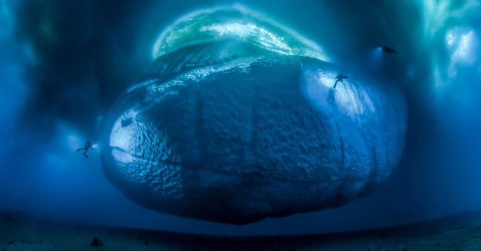 Esta foto pouco comum chama-se O Monstro do Gelo. A francesa Laurent Ballesta fotografou a cena nas águas da região leste da Antártida, perto da base científica francesa Dumont d'Urville. Ela mostra a parte de baixo de um iceberg e, na verdade, traz um mosaico de várias imagens coladas juntas. É a vencedora da categoria 'Ambientes da Terra'.