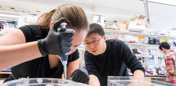 Em seu laboratório no MIT, Feng Zhang coordena o trabalho da estudante de doutorado Silvana Konermann; cientista liderou equipe que conseguiu novo avanço em técnica de edição genética - Justin Knight / MIT