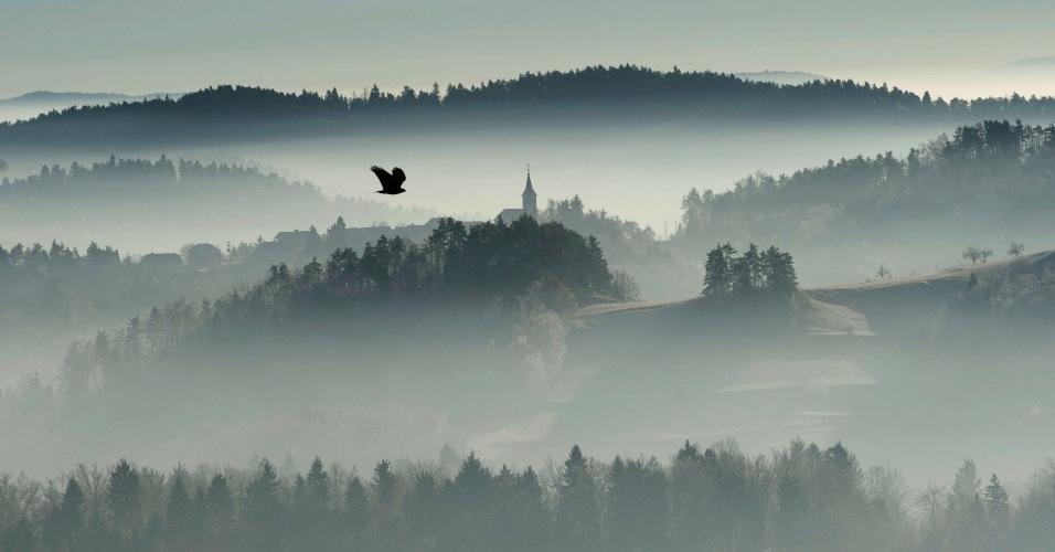 26.dez.2016 - Pássaro voa entre a neblina nas montanhas de Zlebe, Eslovênia