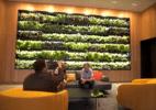 Modernosa, nova sede faz McDonald's pagar de startup e posar de saudável  (Foto: Divulgação/McDonald's)