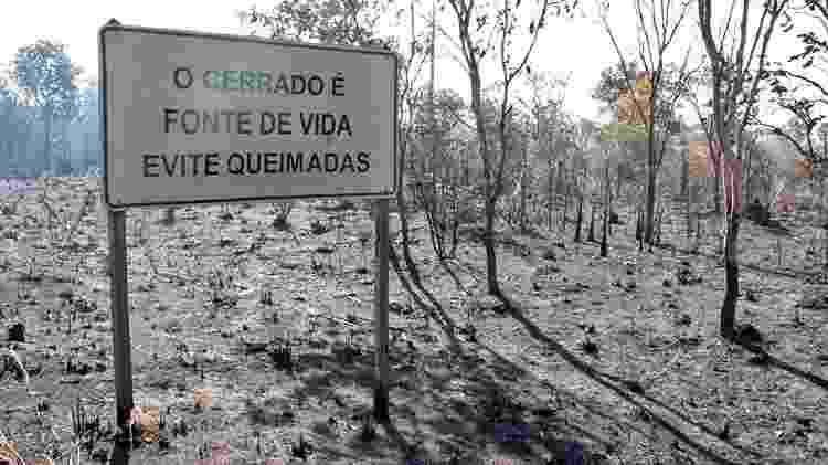 Tocantins é um dos estados que mais sofre com queimadas - Divulgação/Alvaro Vallim/Governo do Tocantins