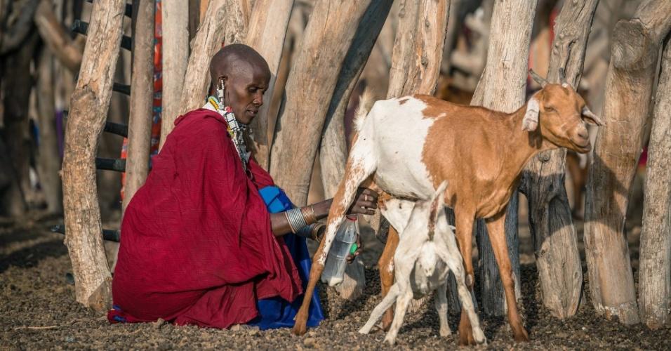 12.jan.2016 - Mulher masai ordenha cabra ao mesmo tempo em que um filhote mama. A imagem faz parte do ensaio feito em outubro de 2015 durante expedição à Tanzânia. O fotógrafo de 30 anos passou 20 dias no país e registrou o cotidiano de três tribos locais: masai, bushman e tatoga. As mulheres usam roupas coloridas e joias durante as celebrações na tribo, quando as famílias sacrificam animais, como vacas e bodes