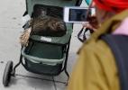 Shannon Stapleton/Reuters