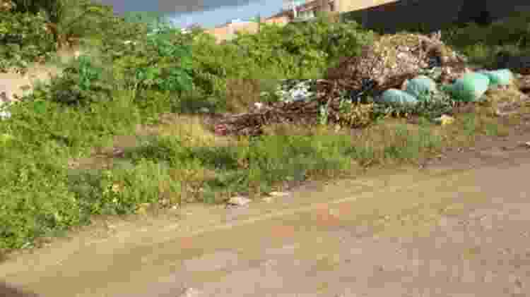 No bairro de Tabuleiro do Pinto, as casas não têm esgoto tratado, a rua não tem asfalto e há muito lixo espalhado pelo mato - Arquivo Pessoal - Arquivo Pessoal