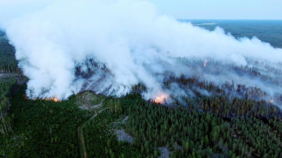 Incêndio florestal no noroeste da Finlândia devastou mais de 300 hectares, o equivalente a mais de 420 campos de futebol - Glenn Haff/Lehtikuva/AFP