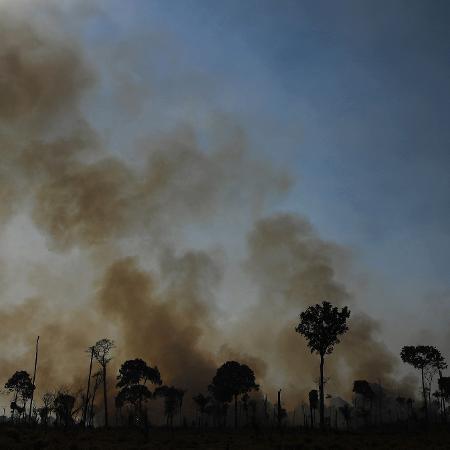 16.ago.2020 - Imagem mostra incêndio na região de Novo Progresso (PA), na Amazônia - Carl de Souza/AFP