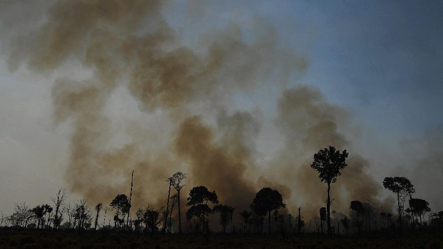 Arquivo - Estudo publicado na revista Nature mostrou que algumas áreas da Floresta Amazônica já emitem mais dióxido de carbono do que absorvem - Carl de Souza/AFP