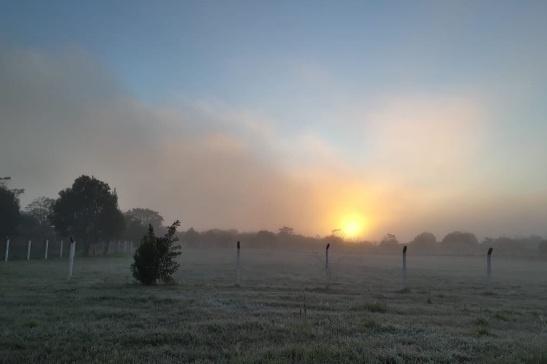 8.jun.2018 - O fim do Outono foi marcado por temperaturas negativas e geadas em Soledade, no noroeste do Rio Grande do Sul