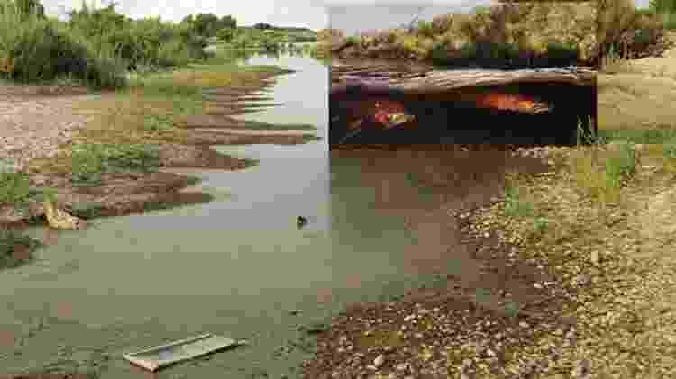 Veja a diferença que fez reintroduzir o salmão neste rio - Passion Pictures