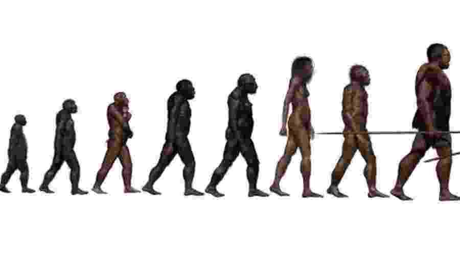 A história da evolução humana está se tornando mais complexa do que esta imagem indica - Science Photo Library
