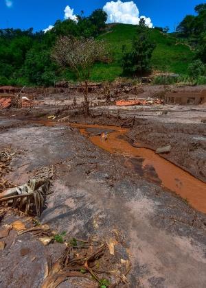 Lama e destruição no distrito de Paracatu, em Mariana (MG)