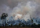 Ministério da Economia diz concordar com plano de Salles sobre preservação - Joao Laet / AFP