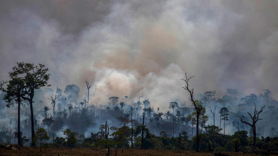 Joao Laet / AFP