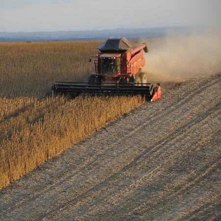 As atividades do comitê terão como objetivo subsidiar a ministra da Agricultura na tomada de decisões durante o período de emergência pública decorrente da pandemia - Charles Echer/ Pixabay