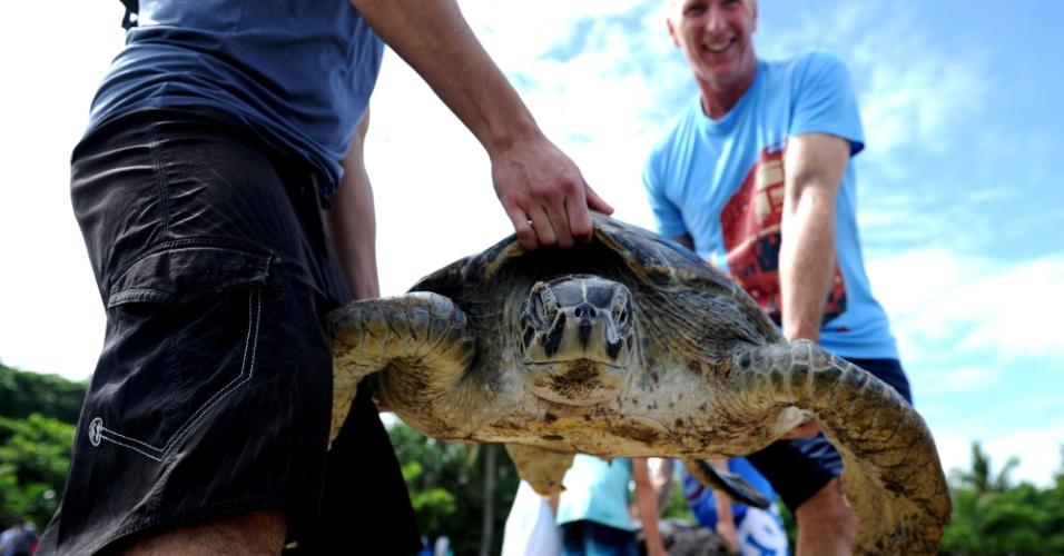 14.abr.2016 - Turistas estrangeiros ajudam liberar tartarugas verdes em praia na ilha de Bali (Indonésia). Os 45 animais libertados haviam sido apreendidos em 6 de abril pela marinha indonésia em uma operação contra a venda ilegal dos animais