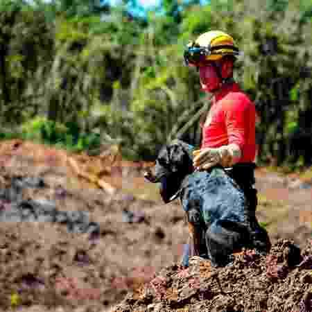 7.mar.2019 - Bombeiros fazem buscas após rompimento da barragem da Vale - Diogo Antunes/Futura Press/Estadão Conteúdo