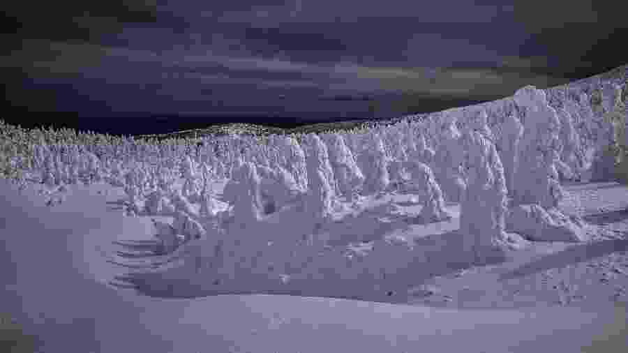 """Floresta coberta por """"monstros"""" de neve, no monte Zao, no Japão - James Whitlow Delano/The New York Times"""