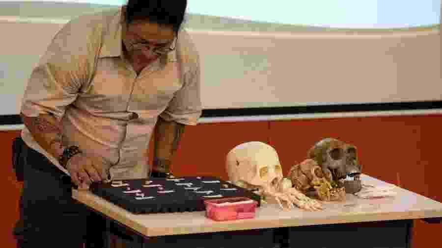 Arqueólogos apresentam ossos do Homo luzonensis - Noel Celis/AFP