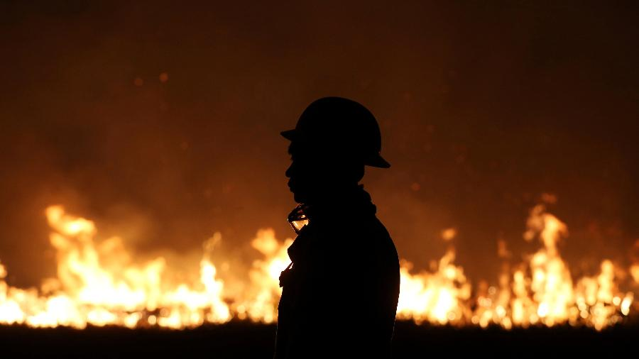 Funcionários do Ibama tentam controlar incêndio em uma reserva indígena no Amazonas - Bruno Kelly/Reuters