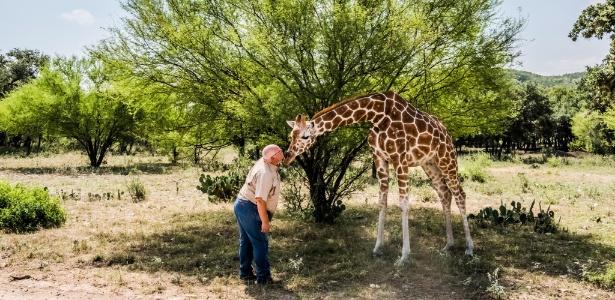 Buck Watson brinca com a girafa Buttercup no Ox Ranch, em Uvalde, Texas (EUA)
