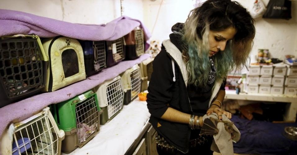 23.fev.2016 - A israelense Nora Lifschitz, de 28 anos, gosta demais de animais. Ela tem 70 morcegos em sua casa em Tel Aviv, em Israel