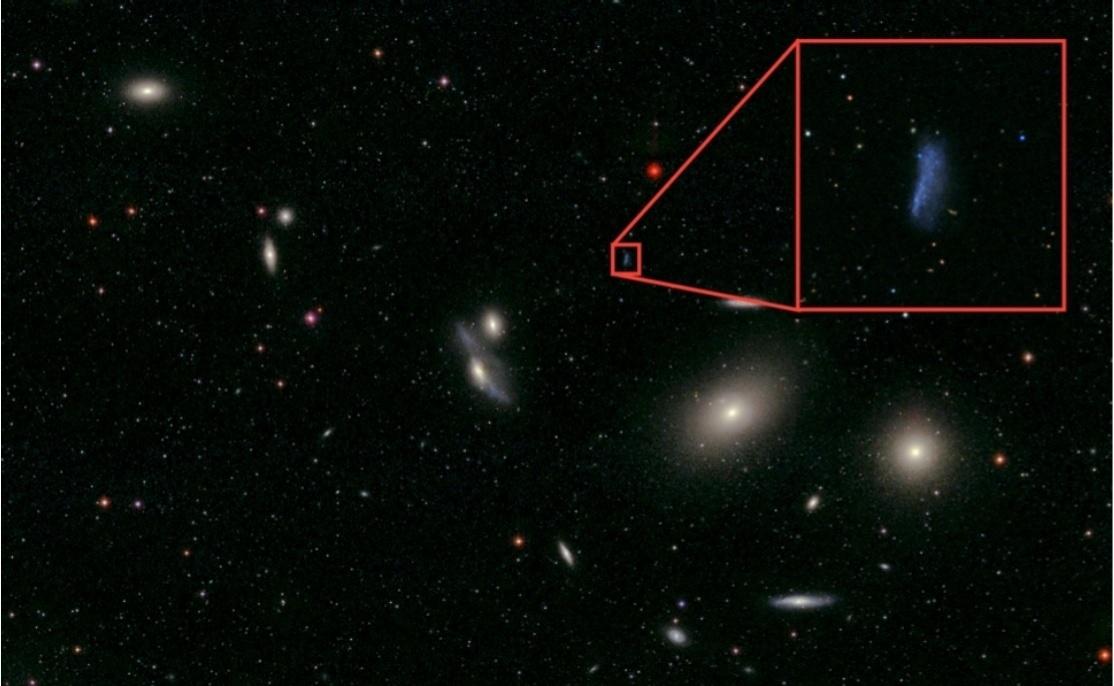 7.mar.2016 - BERÇÁRIO DE ESTRELAS - Astrônomos da Universidade Federal do RJ afirmam que, mesmo sendo pequenas, as galáxias anãs têm um papel importante no cosmo como formadoras de estrelas. Apesar de ter menos de um bilhão de estrelas, enquanto galáxias como a Via Láctea têm 100 bilhões, cientistas descobriram que as galáxias anãs são os principais berçários estelares. Os pesquisadores detectaram um gás associado à formação estelar no aglomerado de Virgem (em vermelho na imagem) e provaram que como a distribuição é mais concentrada nas galáxias anãs, elas geram novas estrelas por centenas de milhões de anos, sendo as maiores responsáveis pela criação de novas estrelas