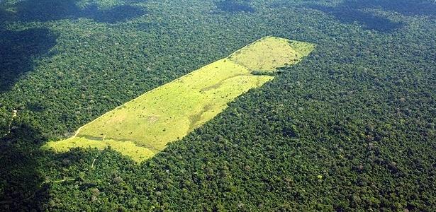 Para ambientalistas, medidas ampliarão o desmatamento no país