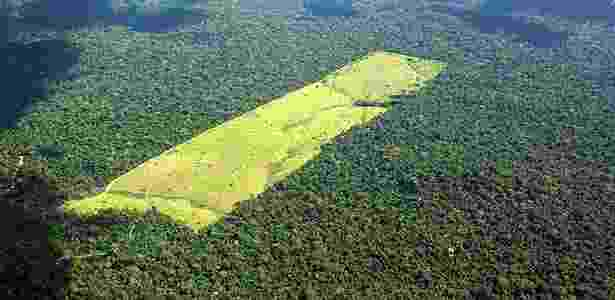 Para ambientalistas, medidas ampliarão o desmatamento no país - Ayrton Vignola - 17.mai.2005/Folhapress