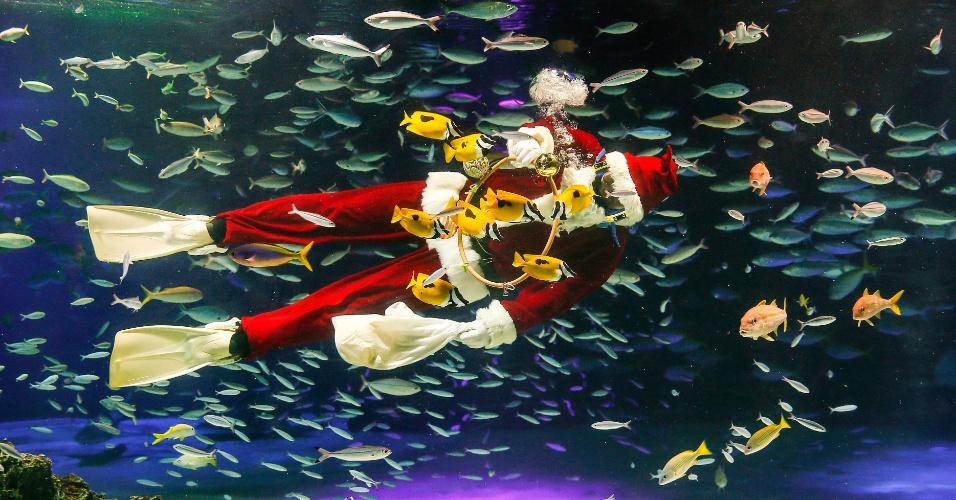 22.dez.2016 - Mergulhador fantasiado de Papai Noel alimenta os peixes do Sunshine Aquarium, em Tokio, no Japão