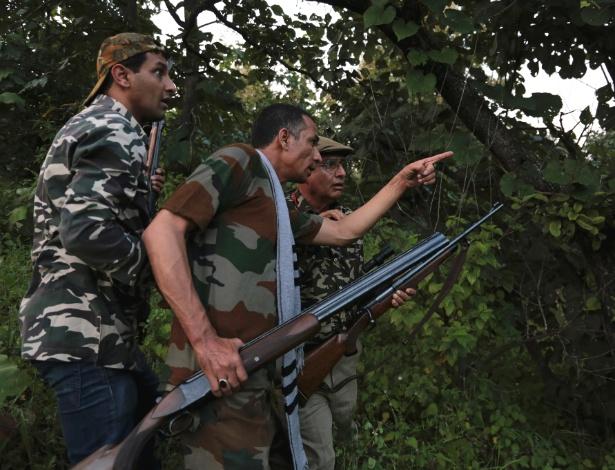 14.set.2018 - Atiradores tentam localizar a tigresa que já matou dezenas de pessoas em uma floresta perto de Khairgaon, na Índia