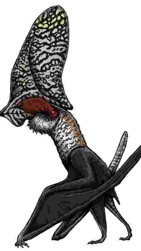 Caiuajara dobruskii, uma espécie menor de pterossauro, atingia cerca de 2,80 metros - FELIPE A. ELIAS/PALEOZOO BRAZIL