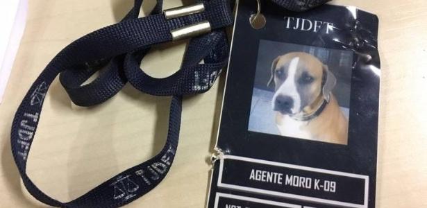 Ana Valéria Matias / Arquivo Pessoal