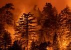 Companhia elétrica da Califórnia é acusada de causar incêndio mortal